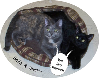 Bella & Blackie